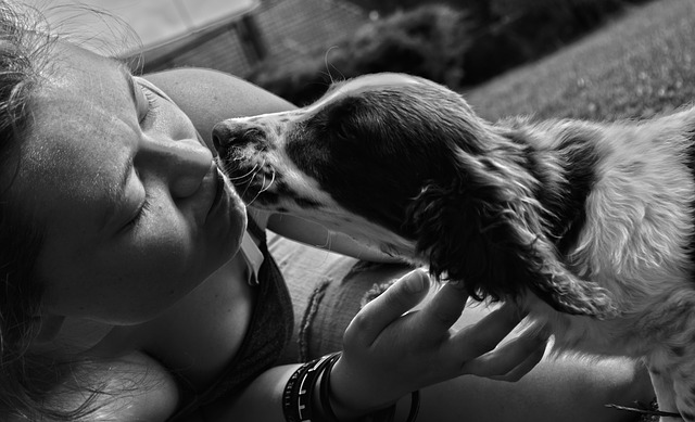 long loving relationship with your dog