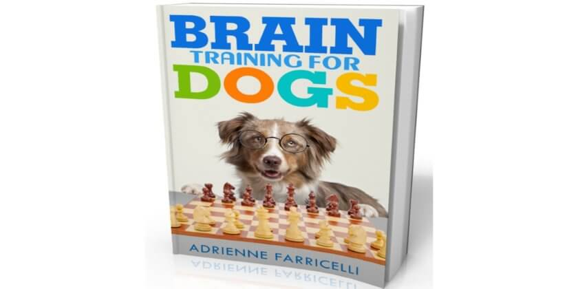 Our review of Ebook Brain Training For Dogs by Adrienne Farricelli